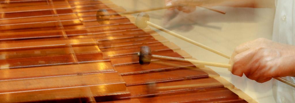 Sección de música mexicanísimo