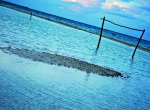 Playa de Michoacán