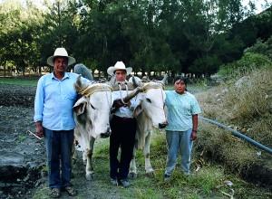Familia Mendoza