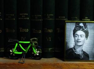Frida en el librero