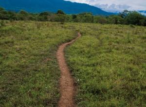 Camino Serpiente