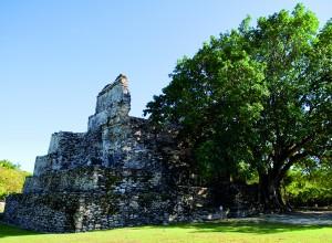 Zona Arqueológica