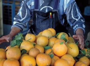 Vendedor de naranjas
