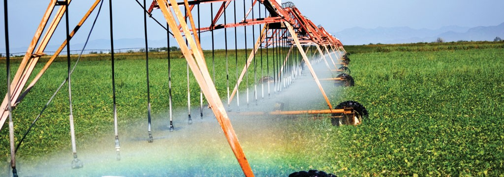Sistema de riego en un campo de algodón