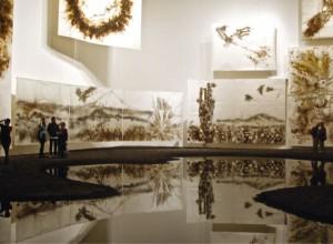 Museo Universitario de Arte Contemporáneo (MUAC), 2011