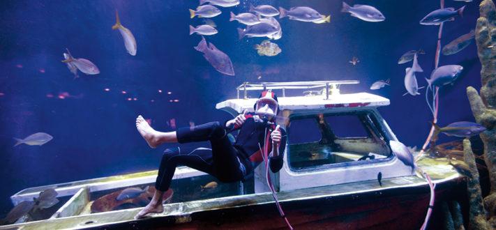 Experiencia acuática en Cancún